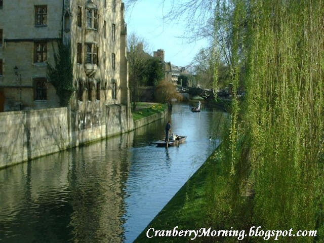 Punting on the canal Cambridge UK 800