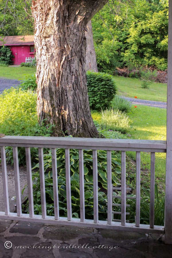 view-from-the-porch