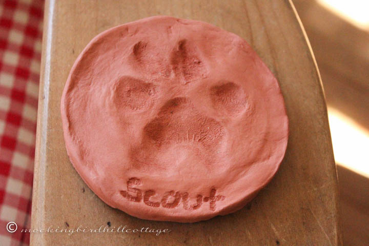 3-3 scout pawprint