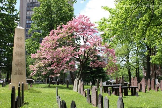 buryinggroundfoundersstone