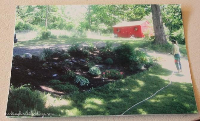 garden2006