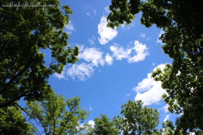 thurs-sky