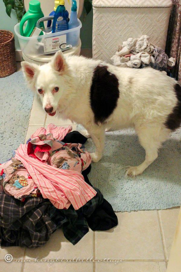 scoutdoinglaundry