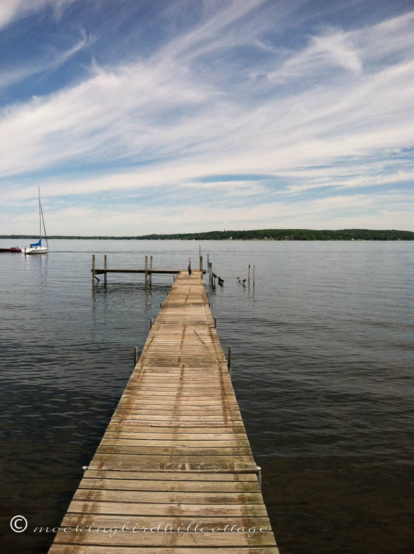 morning-on-the-lake-heron-distance