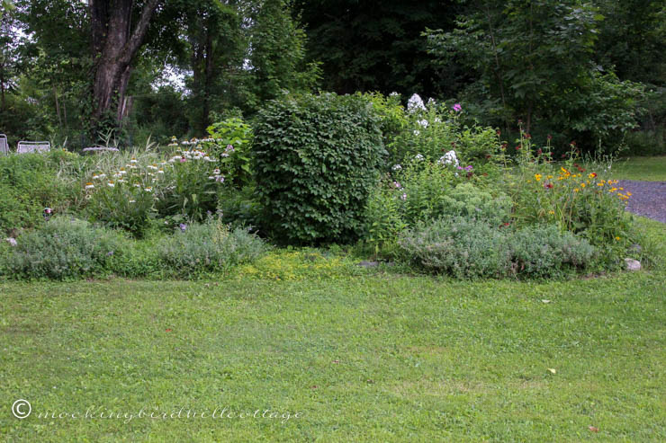 big garden bed in July