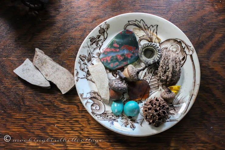 plate of curiosities
