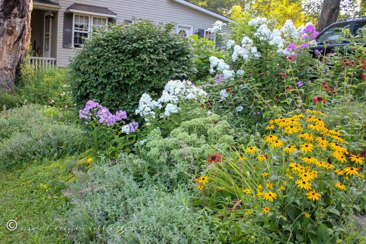 exuberant garden