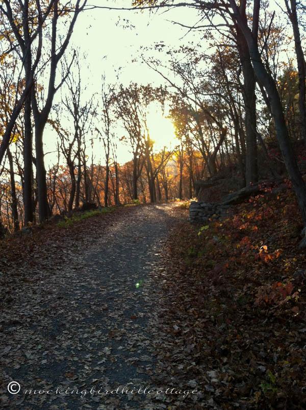 Fall hike 7