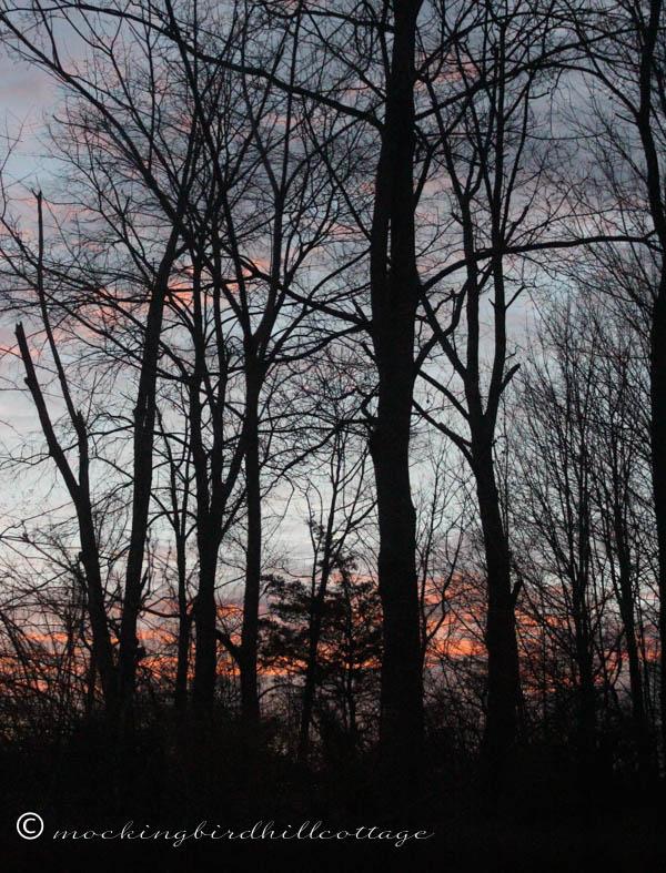 P&P1 - sunrise