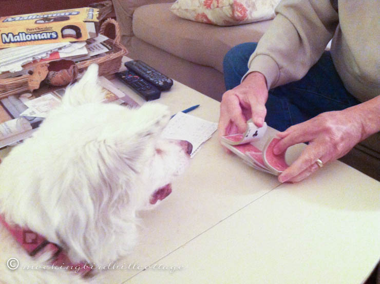 fascinationwithcards