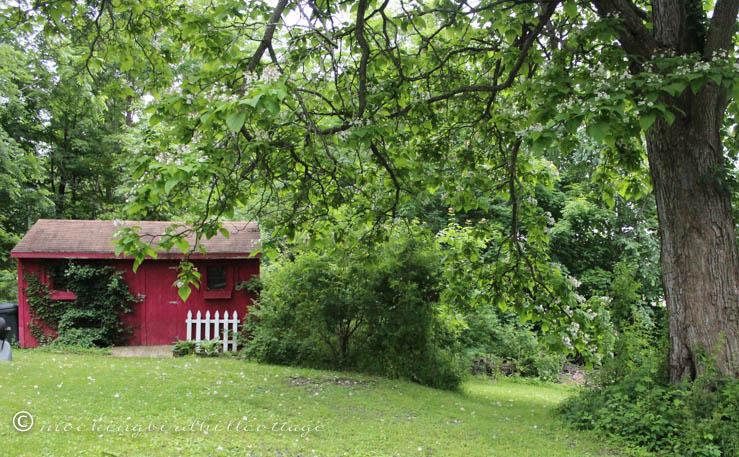 shed - tiny house