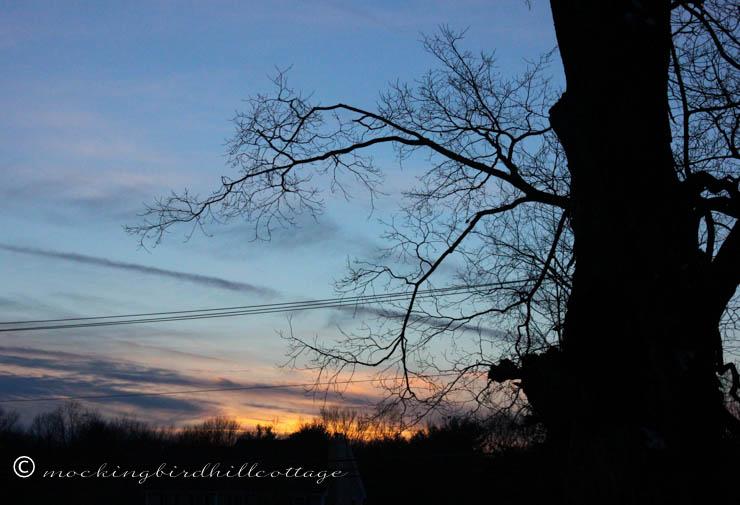1-23 sunset