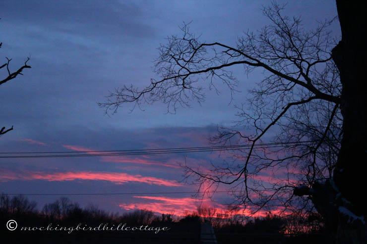1-29 purple sunset