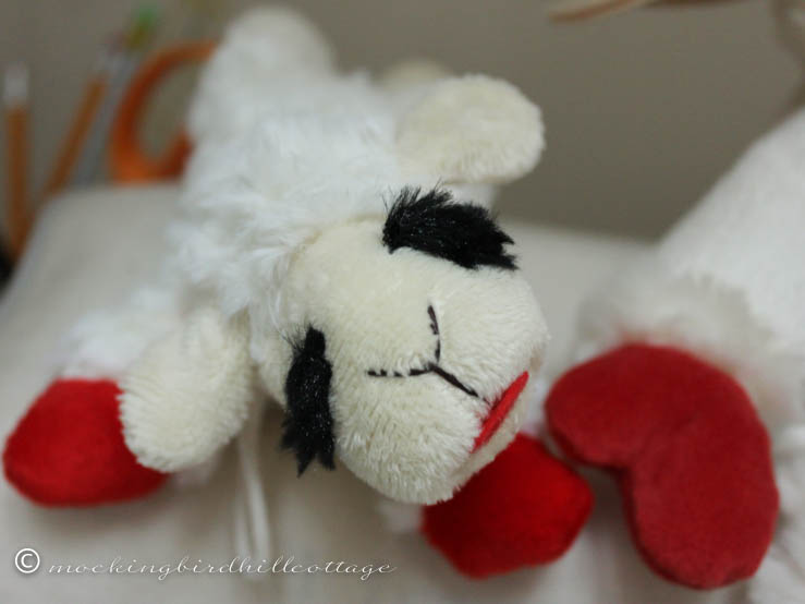 lamb chop 3