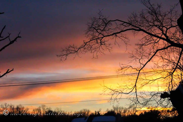 2-13 sunset