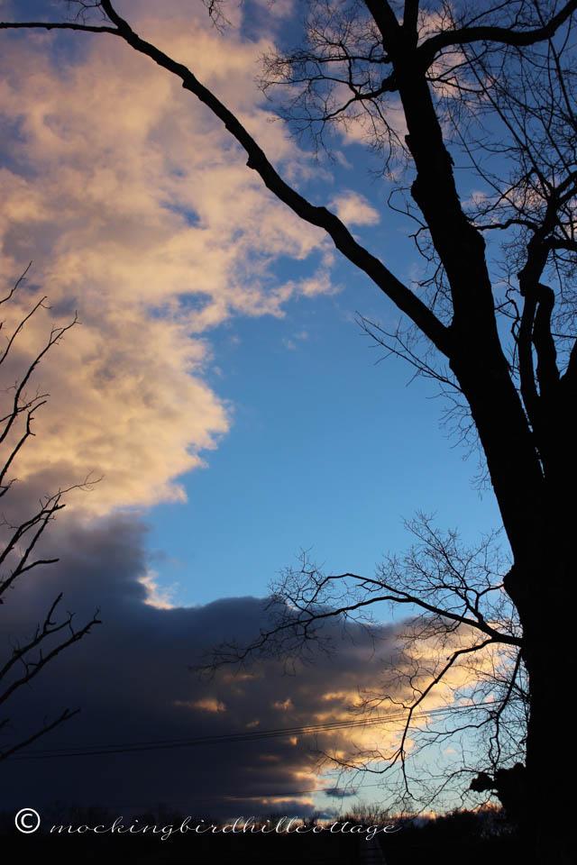 3-18 sunset