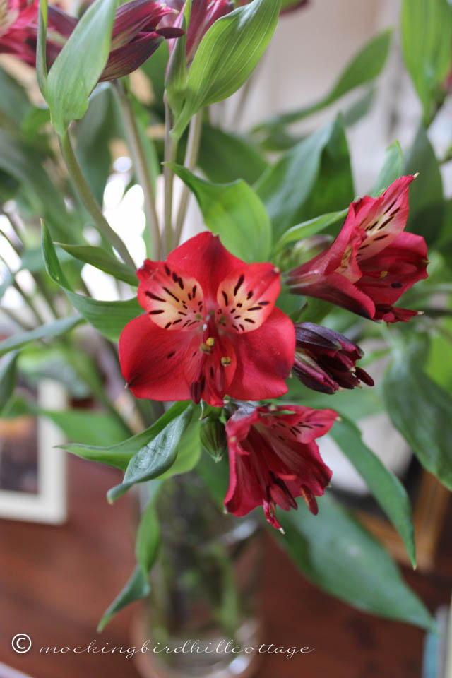 3-19 flowers 2