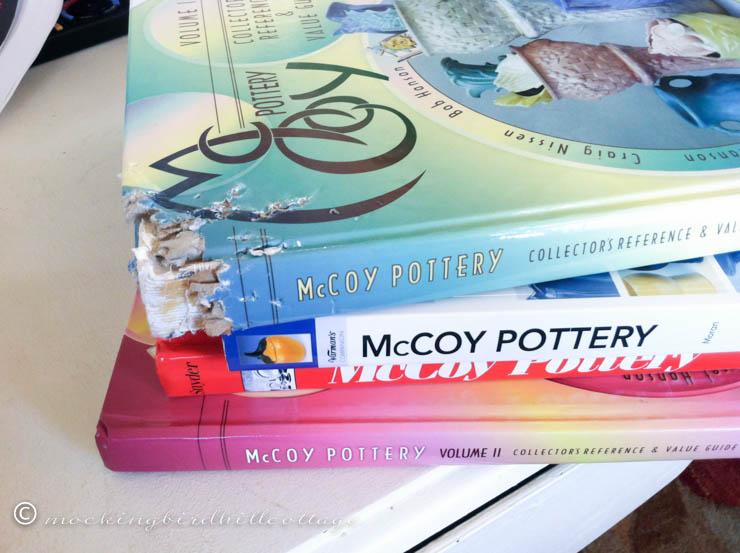 4-19 mccoy books