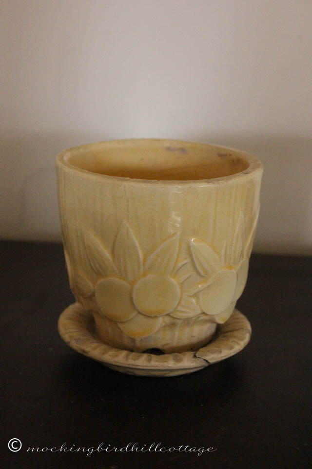 4-27 small sand dollar pot