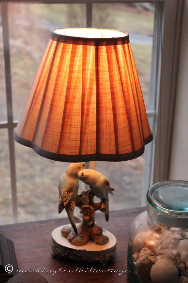 4-9 parakeet lamp