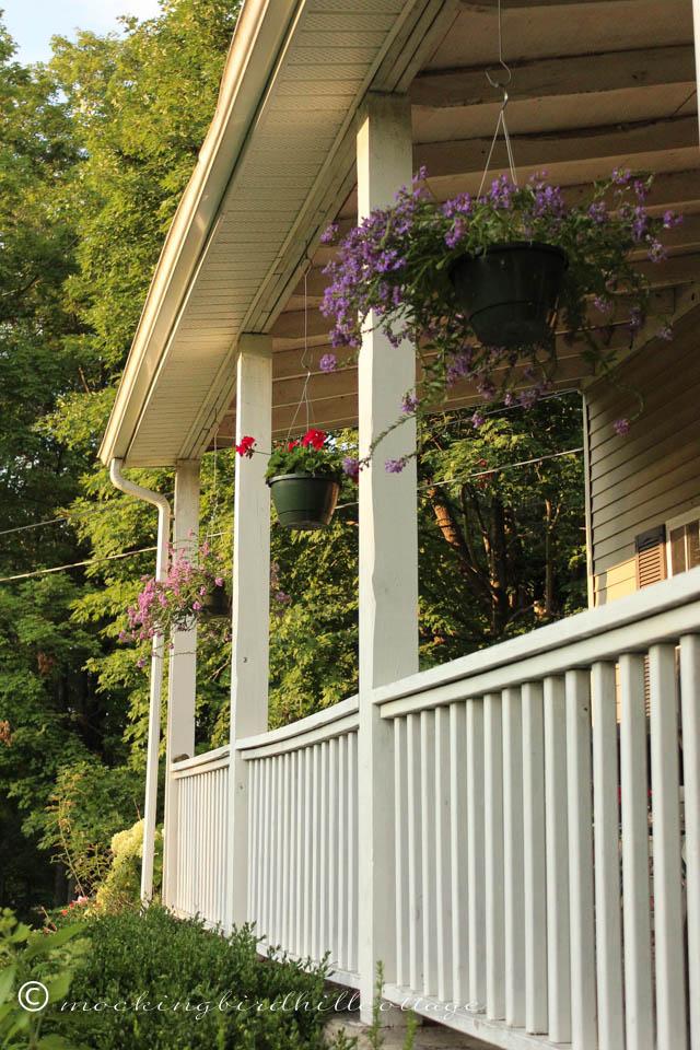 7-31 porchhangingplants