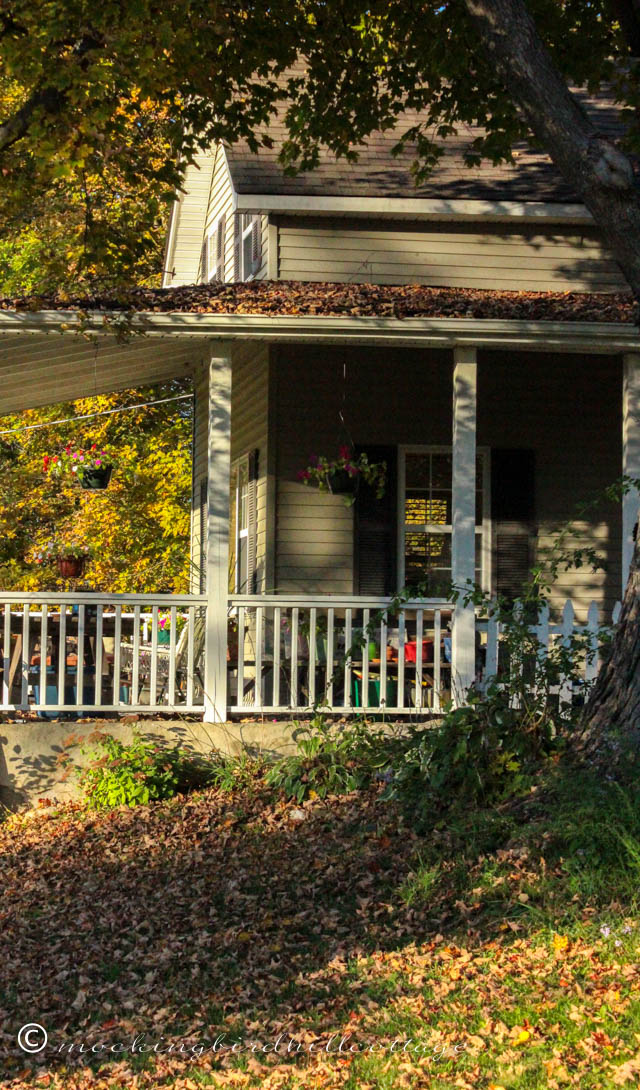 10-9 house and leaves