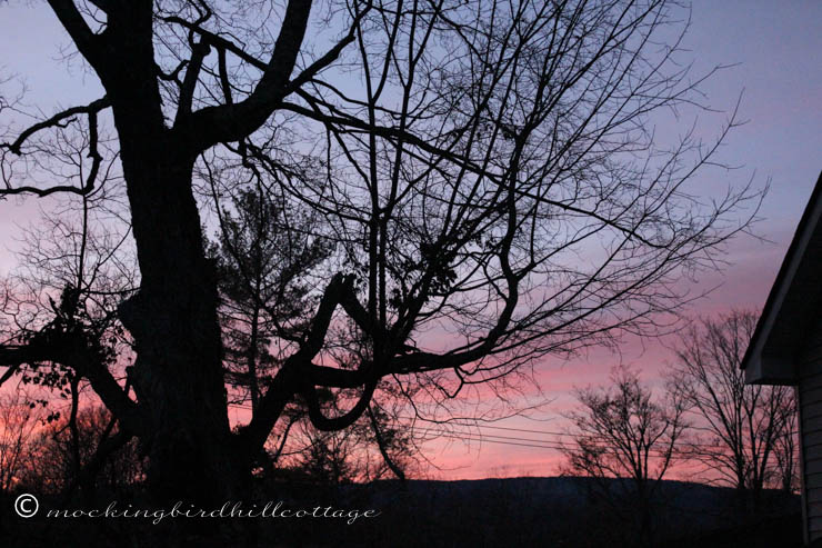 11-10 sunset1