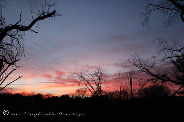 11-10 sunset3