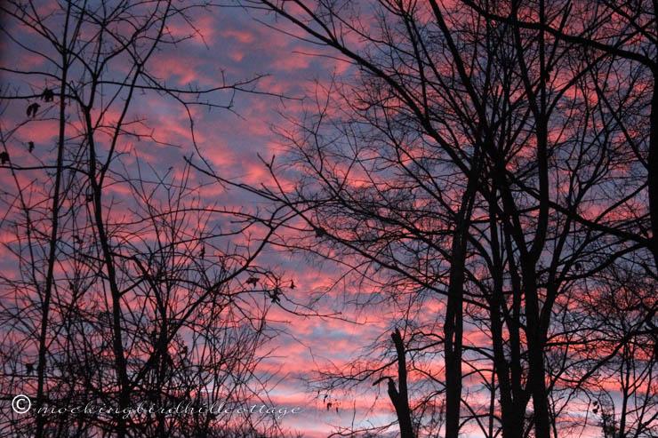 11-21 sunrise