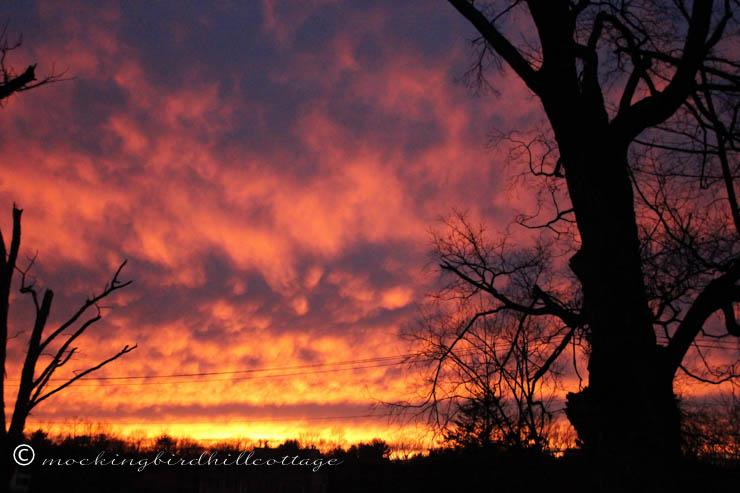 11-23 sunset