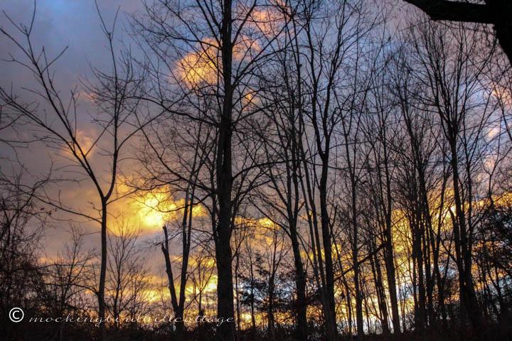 12-15 sunrise