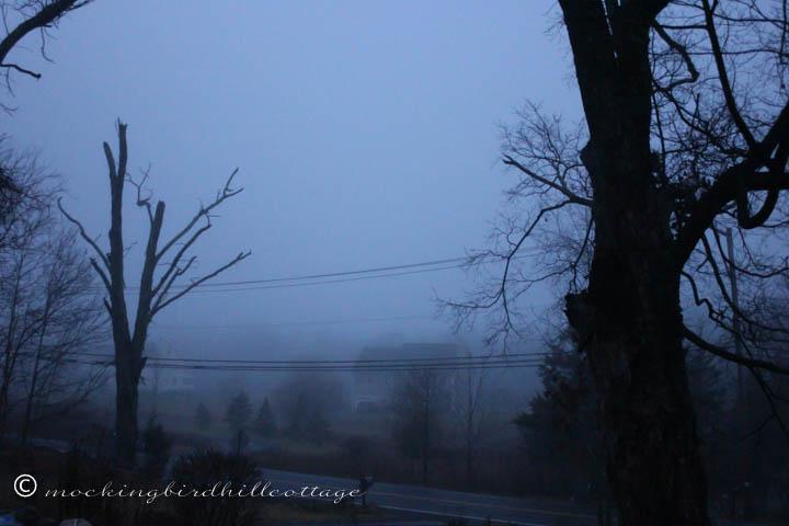 12-23 fog