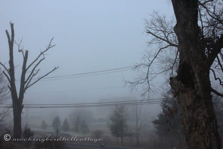 12-6 foggy morning