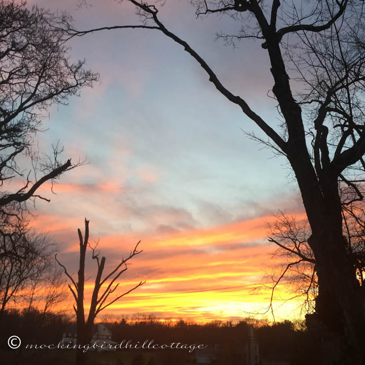 12-8 sunset2