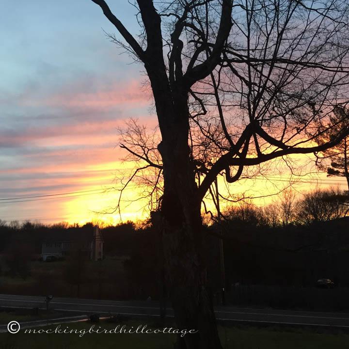 1-1 sunset