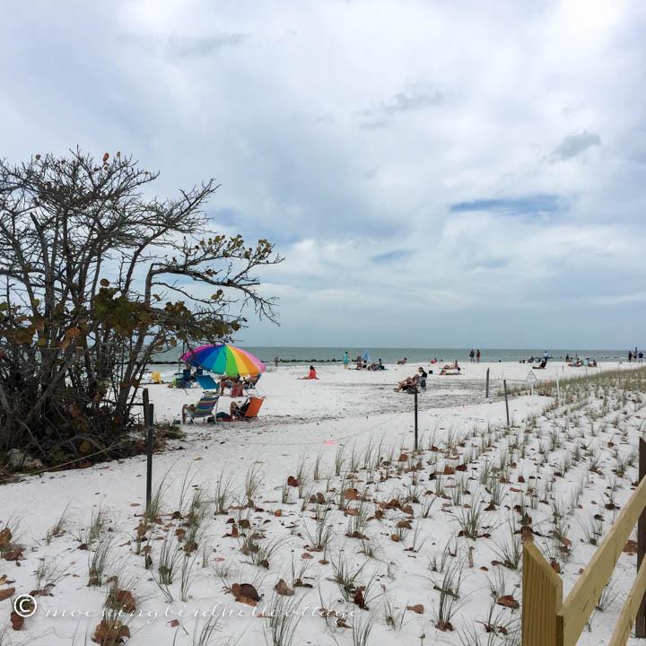 3-12 beach1
