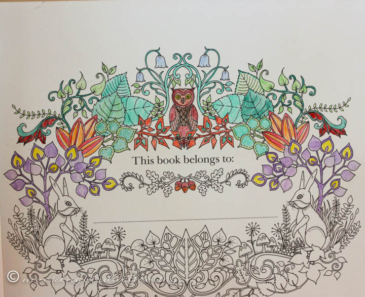 3-26 coloring