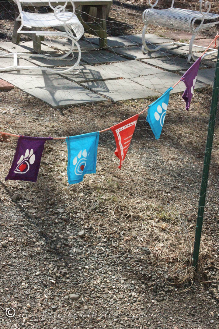3-3 pet flags