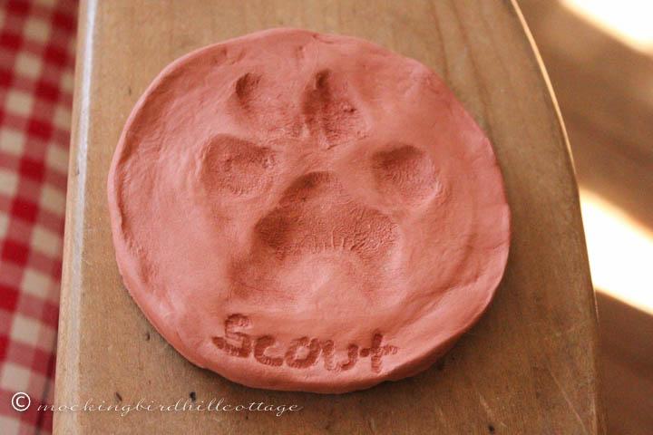 3-3 scout pawprint