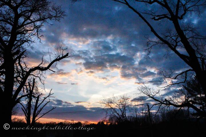 3-8 sunset