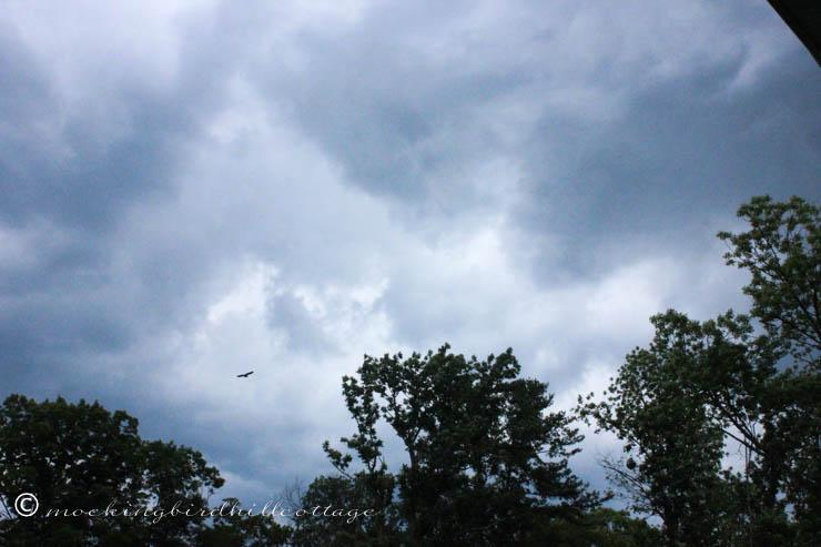 7-19 storm