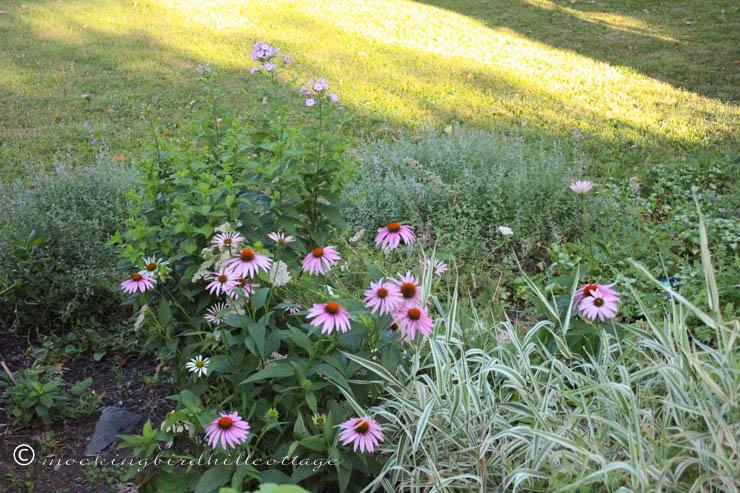 7-24 garden