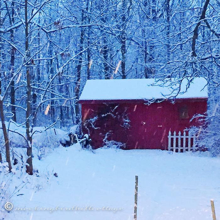 12-5-snowymorning