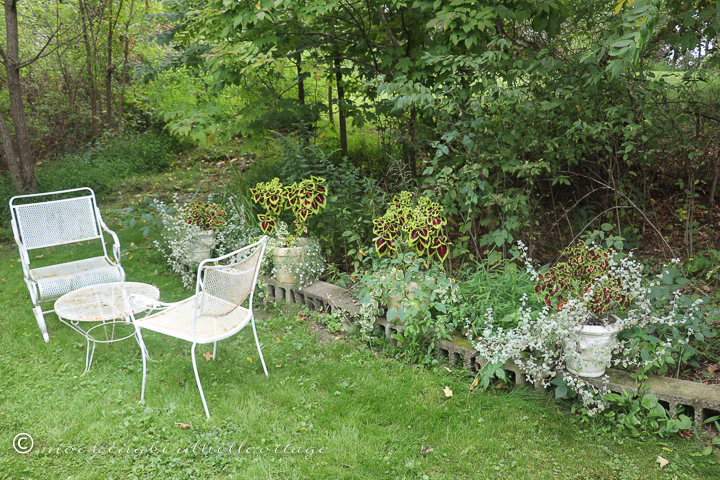 Mockingbird Hill Cottage — Life in our little cottage in the